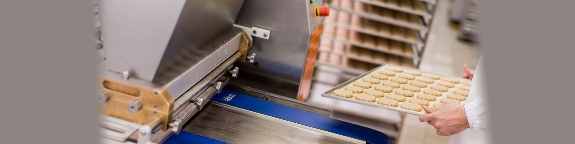 Scheduling software for food manufacturing.